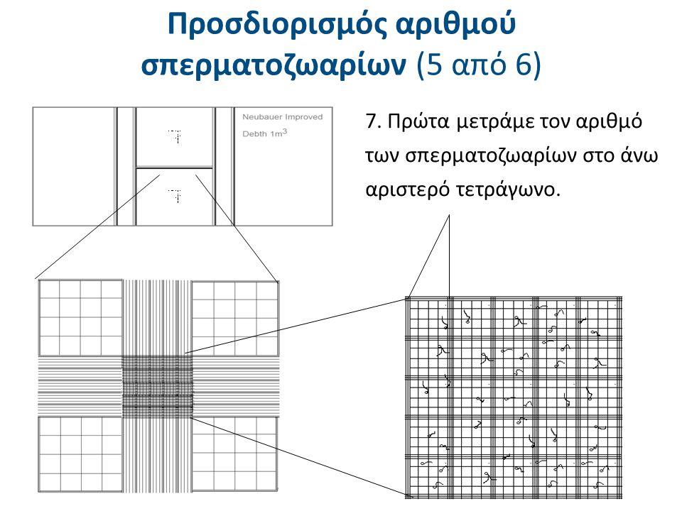 Προσδιορισμός αριθμού σπερματοζωαρίων 9)Μετρώνται οι κεφαλές των σπερματοζωαρίων των οποίων οι κεφαλές περιλαμβάνονται στις τριπλές γραμμές που βρίσκονται αριστερά ή πάνω.