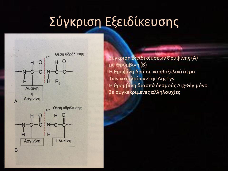 ΟΡΟΛΟΓΙΑ Σε ορισμένα η πρωτεινική δομή αρκεί για την κατάλυση Στα περισσότερα απαιτείται η ύπαρξη του συμπαράγοντα ( ανόργανο ιόν η οργανικό μόριο – συνένζυμο) Ενεργό κέντρο – υπέυθυνο για την δράση του ενζύμου Περιλαμβάνει, το καταλυτικό κέντρο και το κέντρο προσανατολισμού