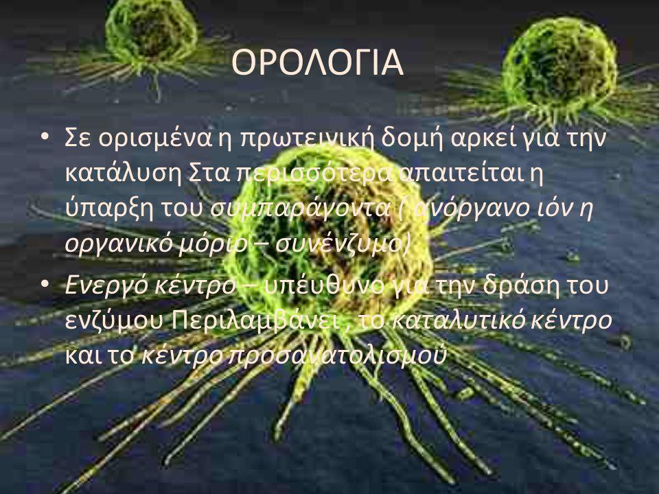 Ενεργό Κέντρο Το ενεργό κέντρο καταλαμβάνει ένα μικρό σχετικά μέρος σε σχέση με το μέγεθος του ενζύμου Το ενεργό κέντρο είναι μία τρισδιάστατη οντότητα Τα υποστρώματα προσδένονται στα ένζυμα με πολλαπλές ασθενείς έλξεις Τα ενεργά κέντρα είναι εσοχές η σχησμές Η εξειδίκευση της πρόσδεσης εξαρτάται απο την επακριβώς καθορισμένη τοποθέτηση των ατόμων στο ενεργό κέντρο
