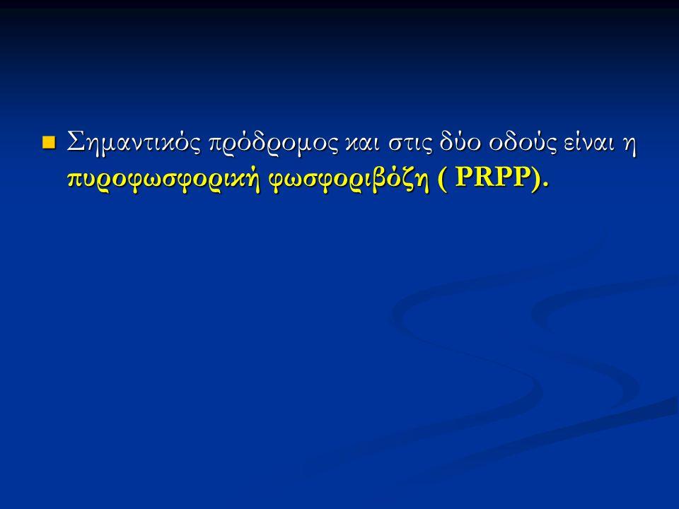 Σημαντικός πρόδρομος και στις δύο οδούς είναι η πυροφωσφορική φωσφοριβόζη ( PRPP). Σημαντικός πρόδρομος και στις δύο οδούς είναι η πυροφωσφορική φωσφο