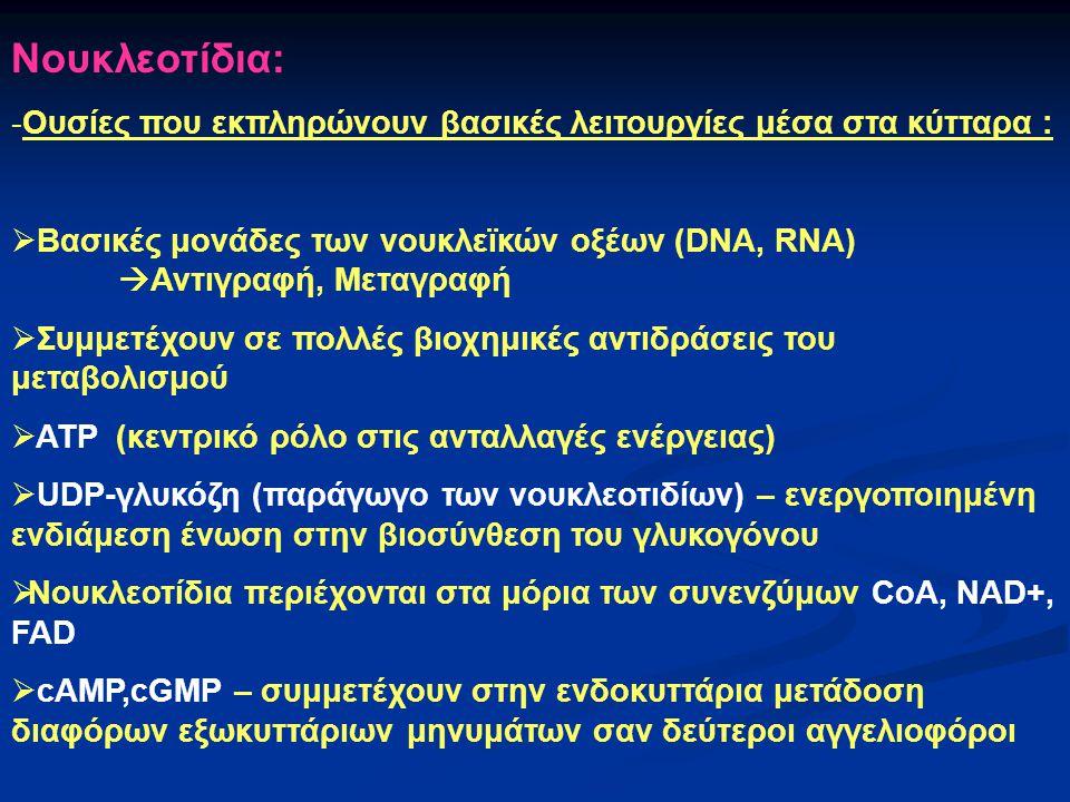 Νουκλεοτίδια: -Ουσίες που εκπληρώνουν βασικές λειτουργίες μέσα στα κύτταρα :  Βασικές μονάδες των νουκλεïκών οξέων (DNA, RNA)  Αντιγραφή, Μεταγραφή
