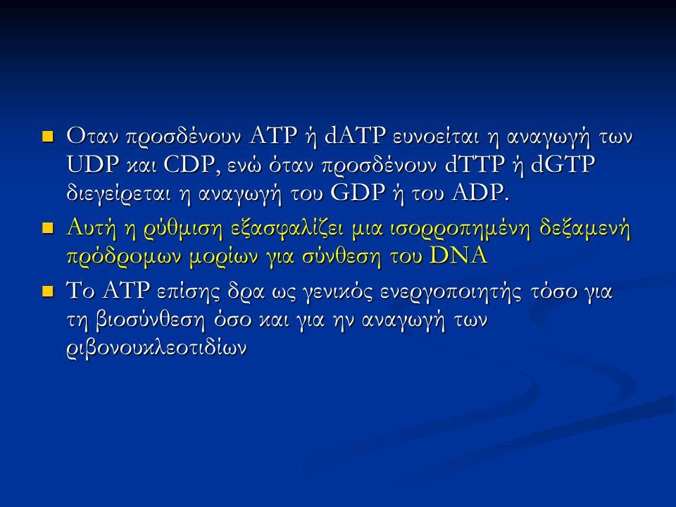 Oταν προσδένουν ΑΤΡ ή dATP ευνοείται η αναγωγή των UDP και CDP, ενώ όταν προσδένουν dTTP ή dGTP διεγείρεται η αναγωγή του GDP ή του ADP. Oταν προσδένο