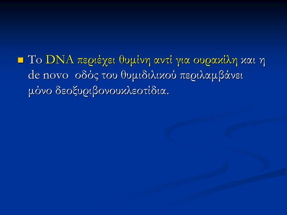 To DNA περιέχει θυμίνη αντί για ουρακίλη και η de novo οδός του θυμιδιλικού περιλαμβάνει μόνο δεοξυριβονουκλεοτίδια. To DNA περιέχει θυμίνη αντί για ο