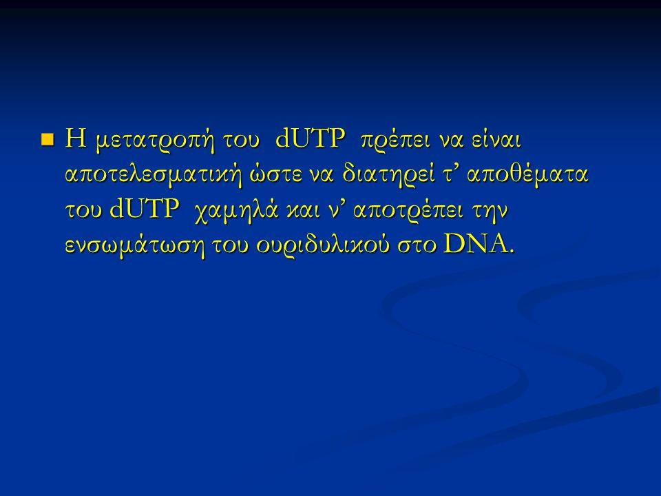 Η μετατροπή του dUTP πρέπει να είναι αποτελεσματική ώστε να διατηρεί τ' αποθέματα του dUTP χαμηλά και ν' αποτρέπει την ενσωμάτωση του ουριδυλικού στο