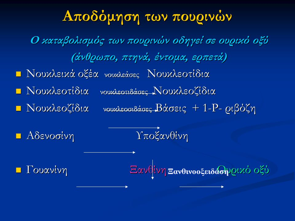 Αποδόμηση των πουρινών Ο καταβολισμός των πουρινών οδηγεί σε ουρικό οξύ (άνθρωπο, πτηνά, έντομα, ερπετά) Νουκλεικά οξέα νουκλεάσες Νουκλεοτίδια Νουκλε