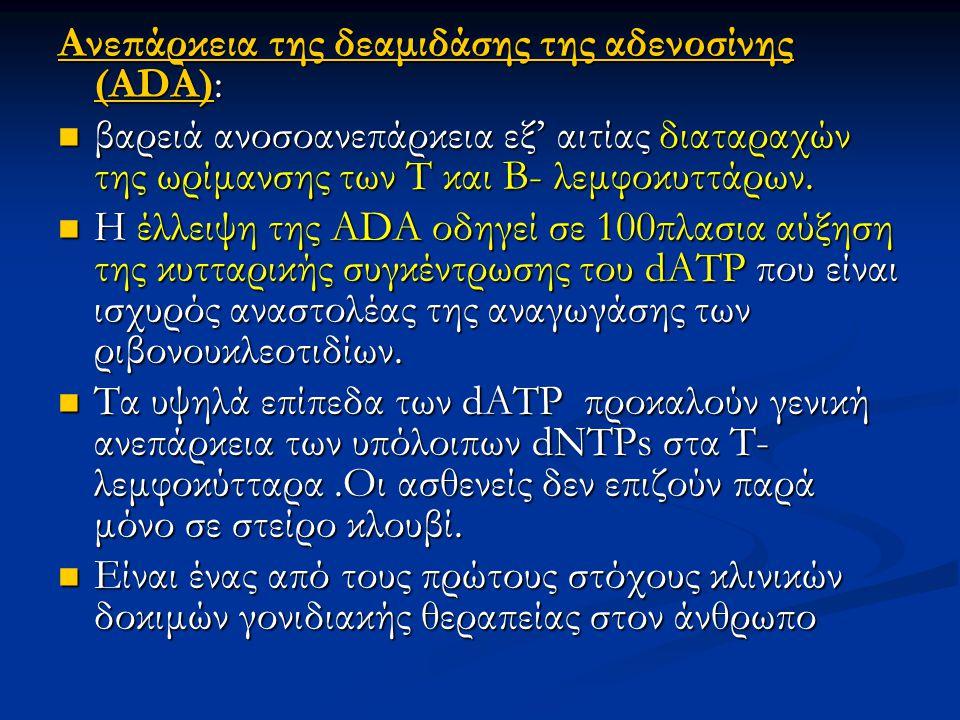 Ανεπάρκεια της δεαμιδάσης της αδενοσίνης (ΑDΑ): βαρειά ανοσοανεπάρκεια εξ' αιτίας διαταραχών της ωρίμανσης των Τ και Β- λεμφοκυττάρων. βαρειά ανοσοανε