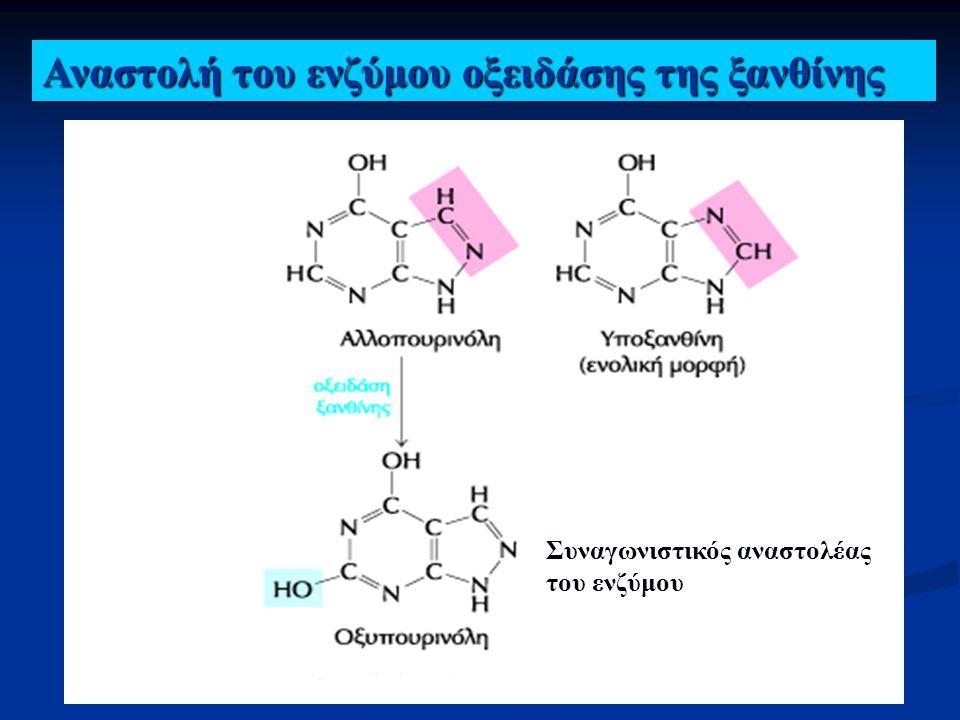 Αναστολή του ενζύμου οξειδάσης της ξανθίνης Αλλοπουρινόλη Υποξανθίνη Συναγωνιστικός αναστολέας του ενζύμου