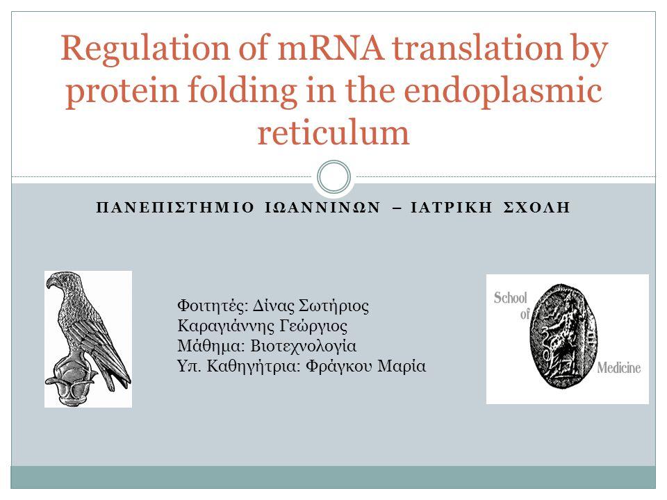 ΠΑΝΕΠΙΣΤΗΜΙΟ ΙΩΑΝΝΙΝΩΝ – ΙΑΤΡΙΚΗ ΣΧΟΛΗ Regulation of mRNA translation by protein folding in the endoplasmic reticulum Φοιτητές: Δίνας Σωτήριος Καραγιά