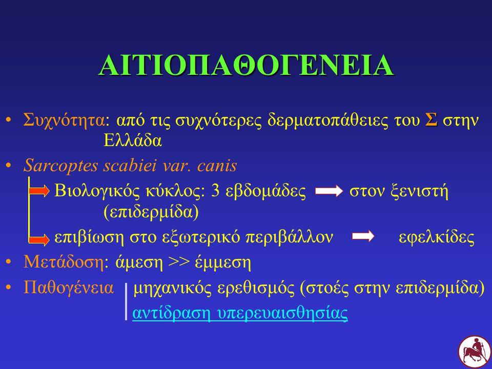 ΣΣυχνότητα: από τις συχνότερες δερματοπάθειες του Σ στην Ελλάδα Sarcoptes scabiei var. canis Βιολογικός κύκλος: 3 εβδομάδεςστον ξενιστή (επιδερμίδα) ε