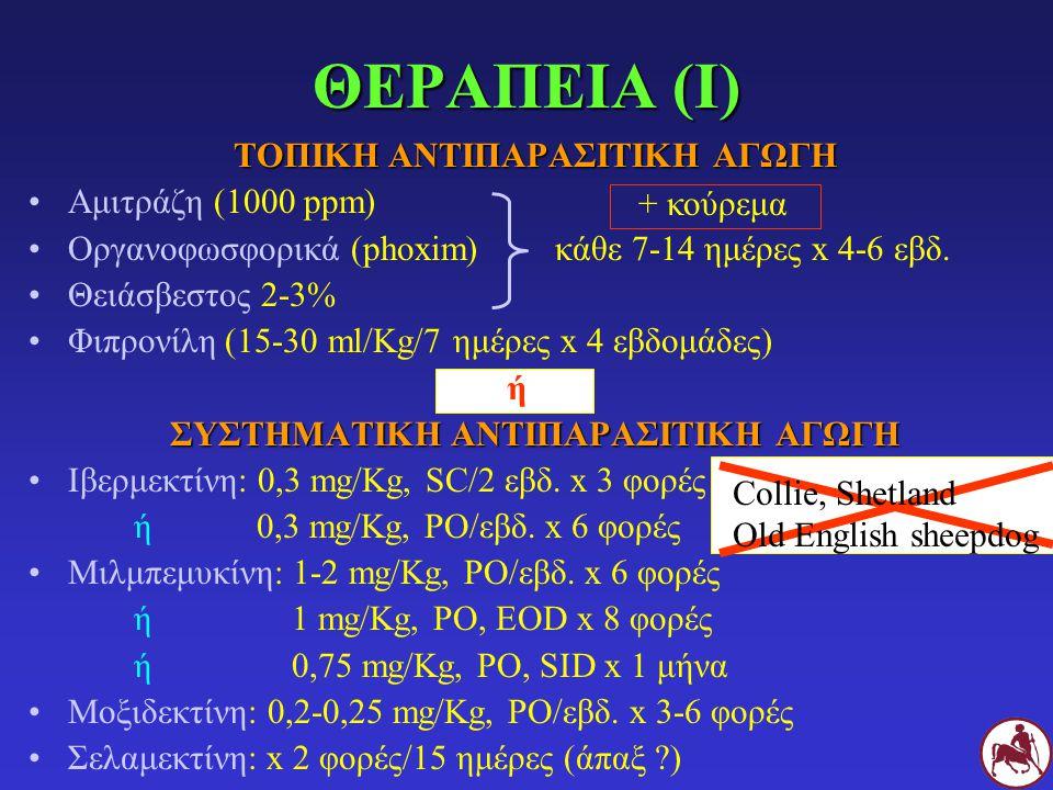 ΘΕΡΑΠΕΙΑ (Ι) ΤΟΠΙΚΗ ΑΝΤΙΠΑΡΑΣΙΤΙΚΗ ΑΓΩΓΗ Αμιτράζη (1000 ppm) Οργανοφωσφορικά (phoxim)κάθε 7-14 ημέρες x 4-6 εβδ. Θειάσβεστος 2-3% Φιπρονίλη (15-30 ml/