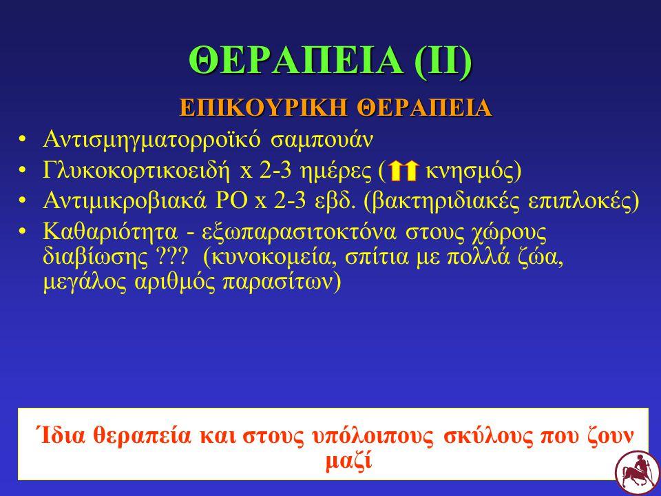 ΕΠΙΚΟΥΡΙΚΗ ΘΕΡΑΠΕΙΑ Αντισμηγματορροϊκό σαμπουάν Γλυκοκορτικοειδή x 2-3 ημέρες ( κνησμός) Αντιμικροβιακά PO x 2-3 εβδ. (βακτηριδιακές επιπλοκές) Καθαρι