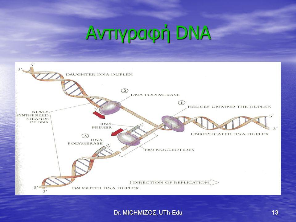 Dr. ΜΙCHΜΙΖΟΣ, UTh-Edu13 Αντιγραφή DNA
