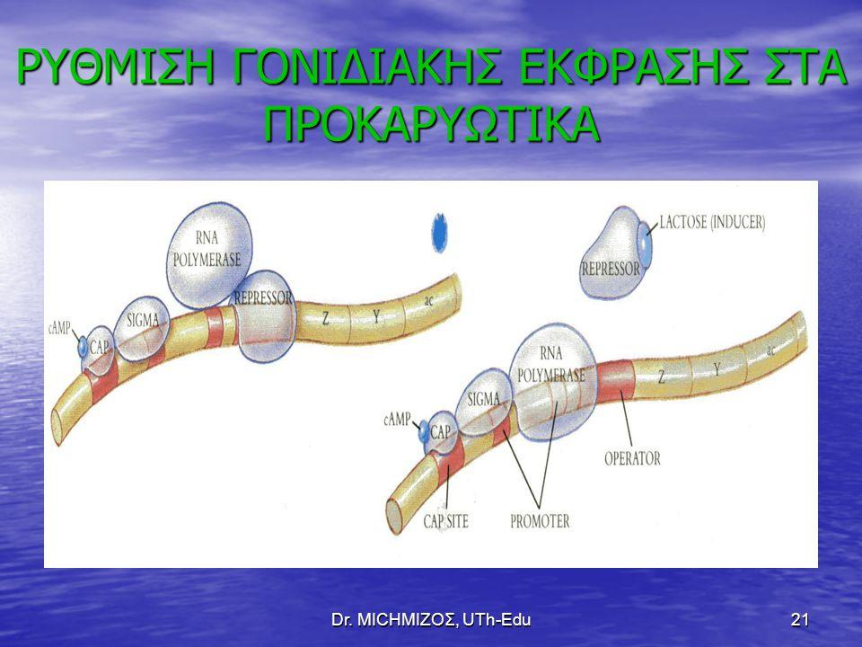 Dr. ΜΙCHΜΙΖΟΣ, UTh-Edu21 ΡΥΘΜΙΣΗ ΓΟΝΙΔΙΑΚΗΣ ΕΚΦΡΑΣΗΣ ΣΤΑ ΠΡΟΚΑΡΥΩΤΙΚΑ
