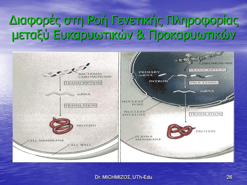 Dr. ΜΙCHΜΙΖΟΣ, UTh-Edu26 Διαφορές στη Ροή Γενετικής Πληροφορίας μεταξύ Ευκαρυωτικών & Προκαρυωτικών