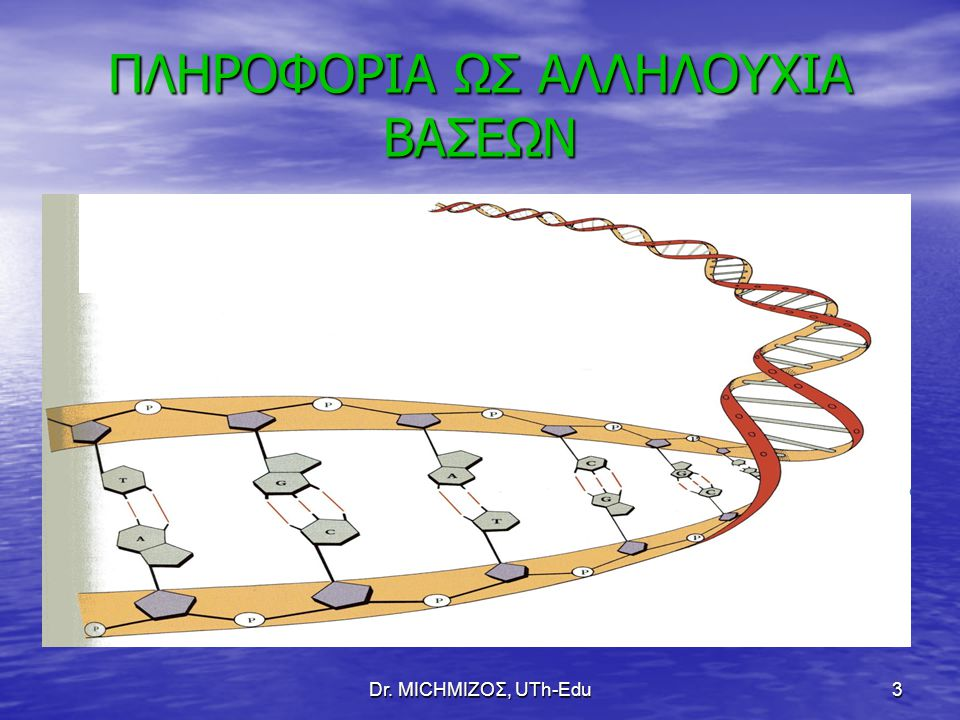 Dr. ΜΙCHΜΙΖΟΣ, UTh-Edu3 ΠΛΗΡΟΦΟΡΙΑ ΩΣ ΑΛΛΗΛΟΥΧΙΑ ΒΑΣΕΩΝ