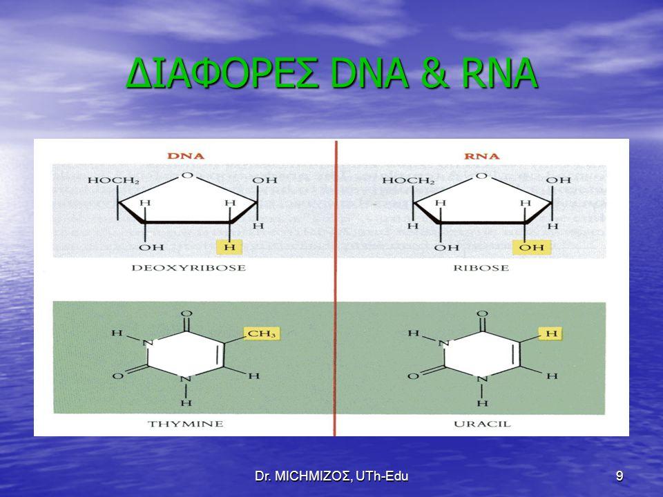 Dr. ΜΙCHΜΙΖΟΣ, UTh-Edu9 ΔΙΑΦΟΡΕΣ DNA & RNA