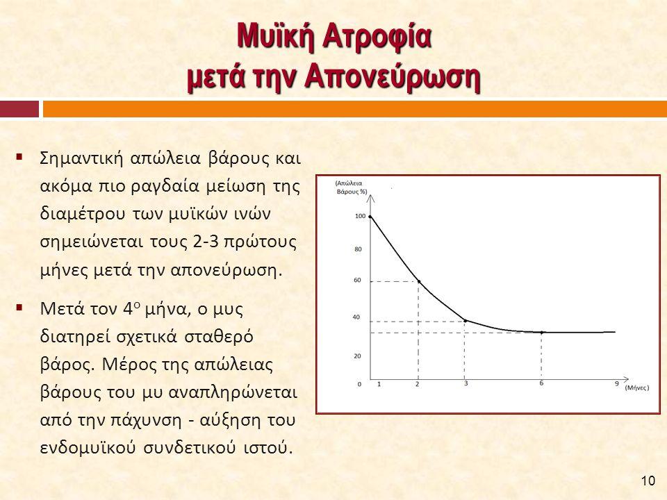 Μυϊκή Ατροφία μετά την Απονεύρωση  Σημαντική απώλεια βάρους και ακόμα πιο ραγδαία μείωση της διαμέτρου των μυϊκών ινών σημειώνεται τους 2-3 πρώτους μήνες μετά την απονεύρωση.