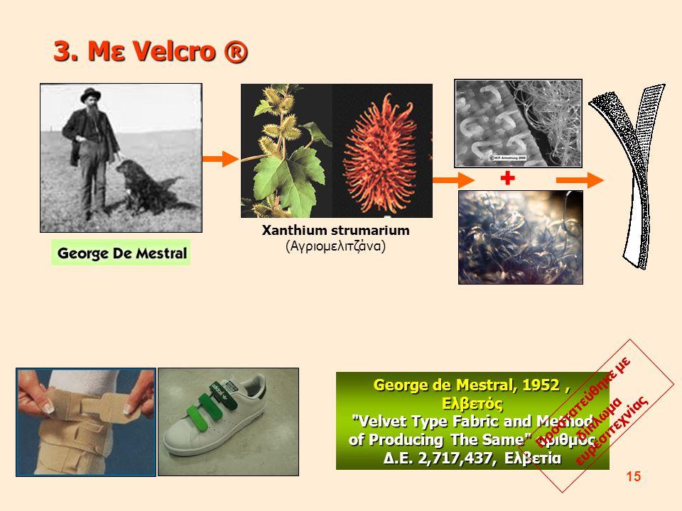 15 3.Με Velcro ® Xanthium strumarium (Αγριομελιτζάνα) + George de Mestral, 1952, Ελβετός