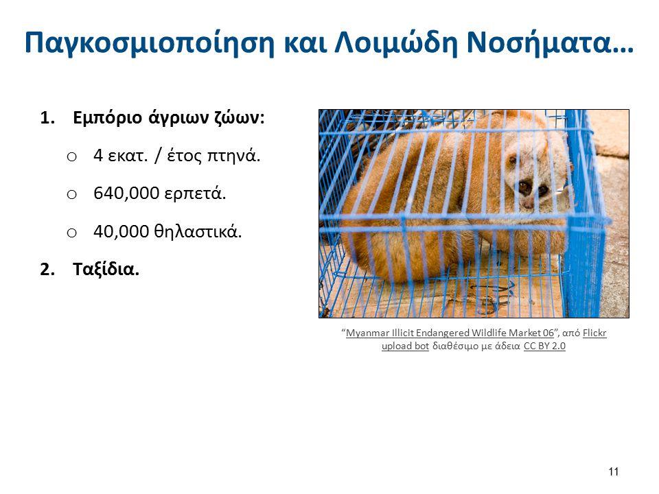"""Παγκοσμιοποίηση και Λοιμώδη Νοσήματα… 1.Εμπόριο άγριων ζώων: o 4 εκατ. / έτος πτηνά. o 640,000 ερπετά. o 40,000 θηλαστικά. 2.Ταξίδια. 11 """"Myanmar Illi"""