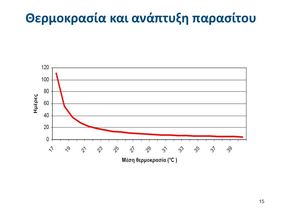 Θερμοκρασία και ανάπτυξη παρασίτου 15