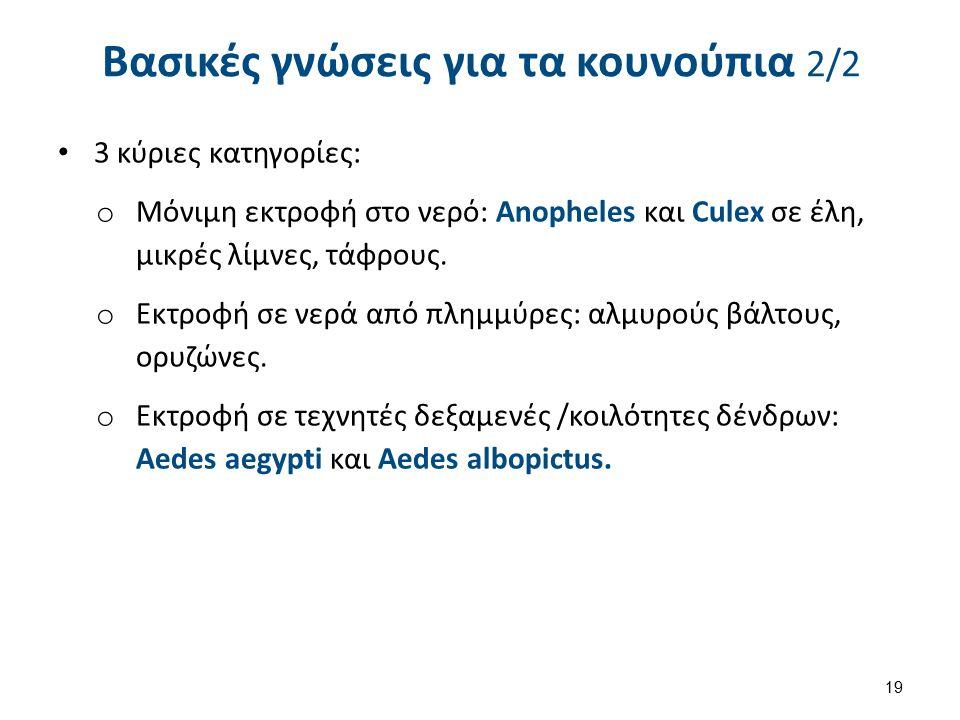 Βασικές γνώσεις για τα κουνούπια 2/2 3 κύριες κατηγορίες: o Μόνιμη εκτροφή στο νερό: Anopheles και Culex σε έλη, μικρές λίμνες, τάφρους.