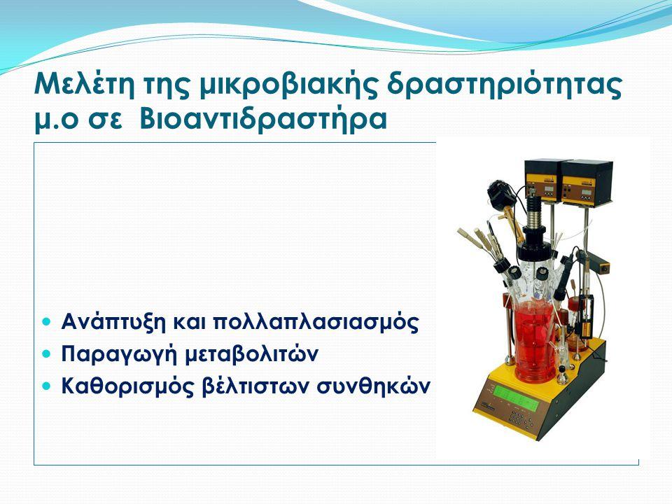 Μελέτη της μικροβιακής δραστηριότητας μ.ο σε Βιοαντιδραστήρα Ανάπτυξη και πολλαπλασιασμός Παραγωγή μεταβολιτών Καθορισμός βέλτιστων συνθηκών