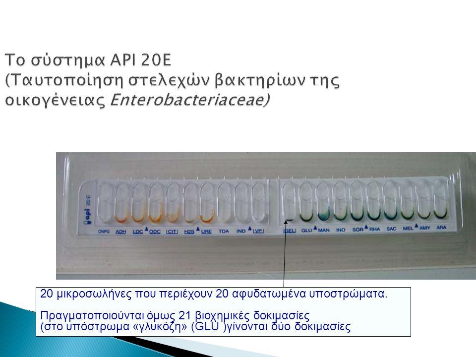 Το σύστημα API 20E (Ταυτοποίηση στελεχών βακτηρίων της οικογένειας Enterobacteriaceae) 20 μικροσωλήνες που περιέχουν 20 αφυδατωμένα υποστρώματα. Πραγμ