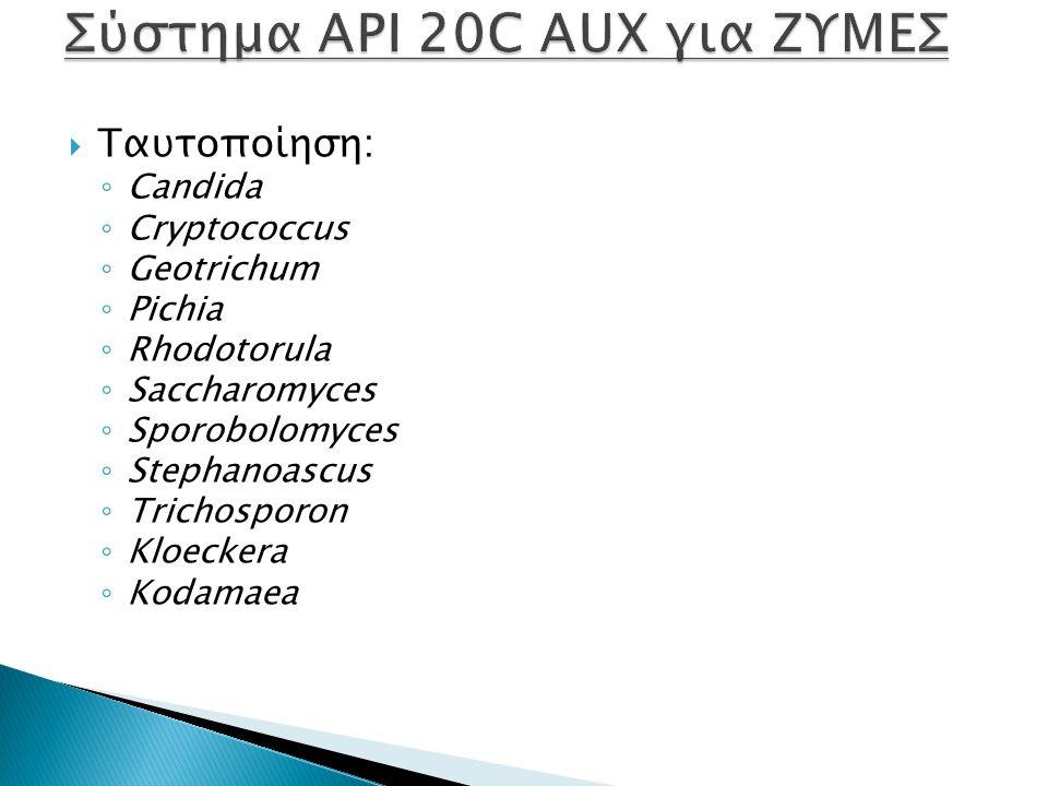  Ταυτοποίηση: ◦ Candida ◦ Cryptococcus ◦ Geotrichum ◦ Pichia ◦ Rhodotorula ◦ Saccharomyces ◦ Sporobolomyces ◦ Stephanoascus ◦ Trichosporon ◦ Kloeckera ◦ Kodamaea