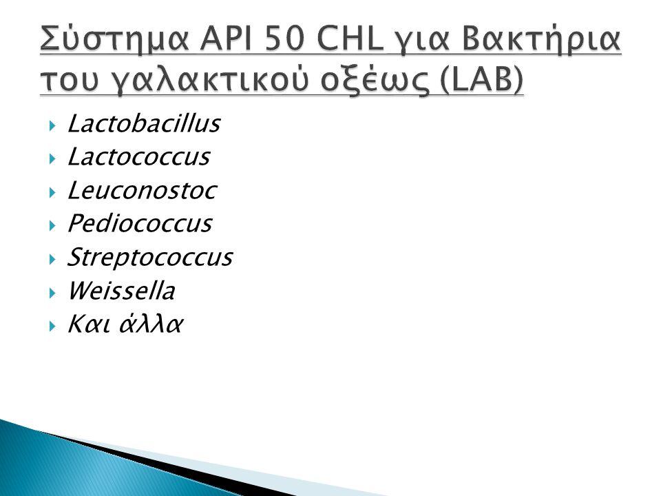  Lactobacillus  Lactococcus  Leuconostoc  Pediococcus  Streptococcus  Weissella  Και άλλα