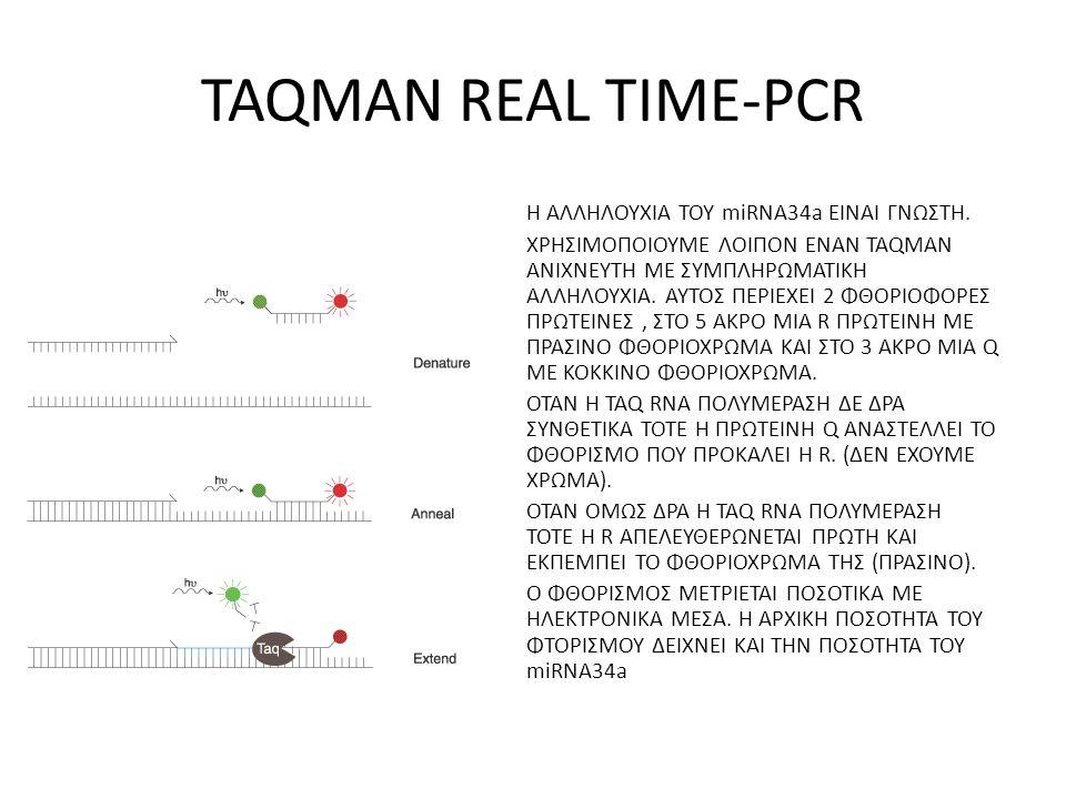 TAQMAN REAL TIME-PCR Η ΑΛΛΗΛΟΥΧΙΑ ΤΟΥ miRNA34a ΕΙΝΑΙ ΓΝΩΣΤΗ. ΧΡΗΣΙΜΟΠΟΙΟΥΜΕ ΛΟΙΠΟΝ ΕΝΑΝ TAQMAN ΑΝΙΧΝΕΥΤΗ ΜΕ ΣΥΜΠΛΗΡΩΜΑΤΙΚΗ ΑΛΛΗΛΟΥΧΙΑ. ΑΥΤΟΣ ΠΕΡΙΕΧΕΙ