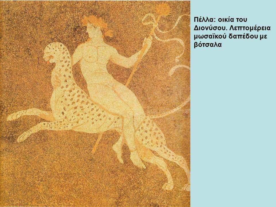 Πέλλα: οικία του Διονύσου. Λεπτομέρεια μωσαϊκού δαπέδου με βότσαλα