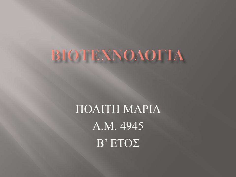 ΠΟΛΙΤΗ ΜΑΡΙΑ Α.Μ. 4945 Β' ΕΤΟΣ