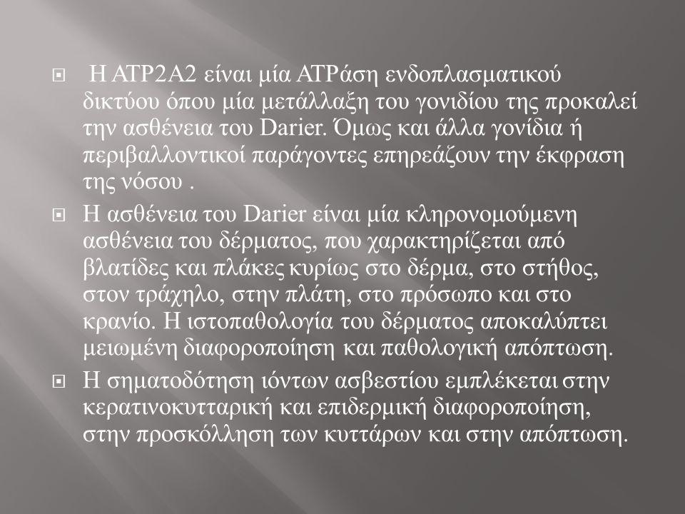  Η ATP2A2 είναι μία ATPάση ενδοπλασματικού δικτύου όπου μία μετάλλαξη του γονιδίου της προκαλεί την ασθένεια του Darier.