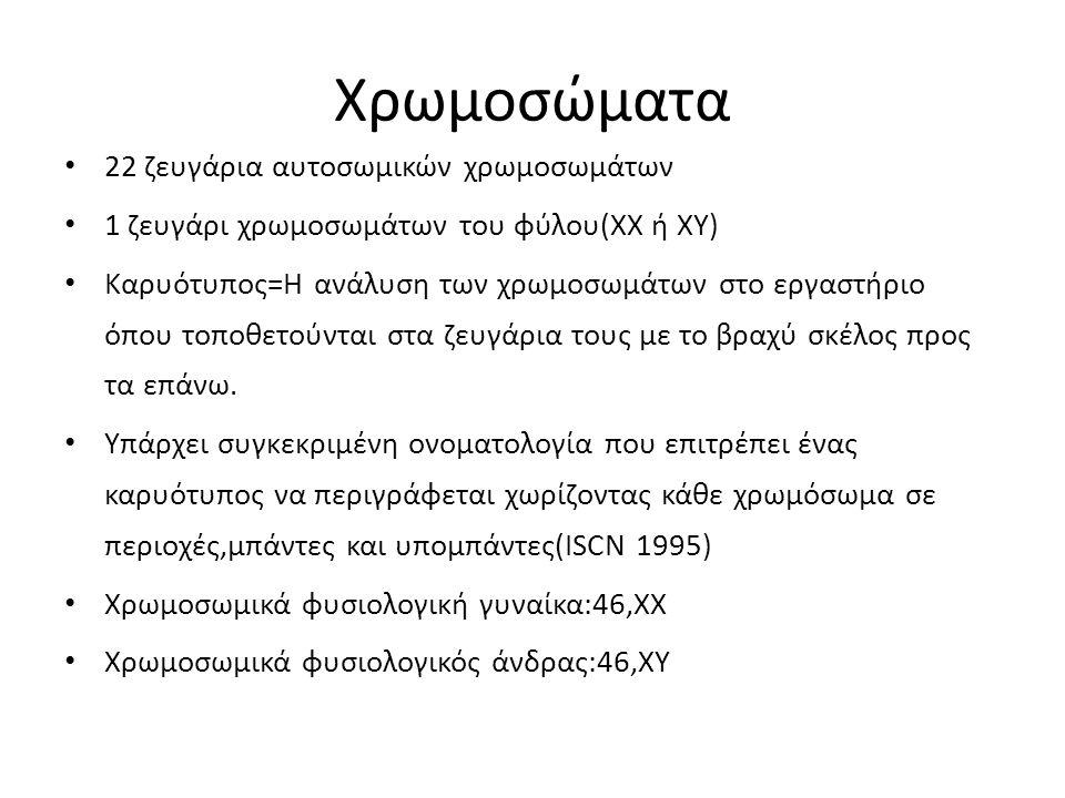 Χρωμοσώματα 22 ζευγάρια αυτοσωμικών χρωμοσωμάτων 1 ζευγάρι χρωμοσωμάτων του φύλου(ΧΧ ή ΧΥ) Καρυότυπος=Η ανάλυση των χρωμοσωμάτων στο εργαστήριο όπου τ