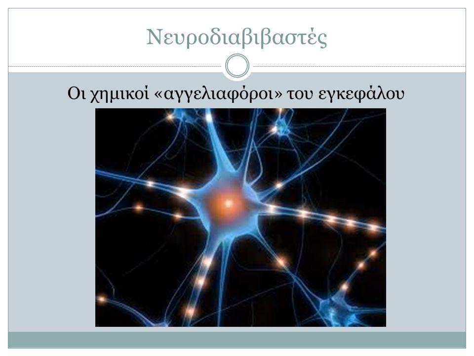 Νευροδιαβιβαστές Οι χημικοί «αγγελιαφόροι» του εγκεφάλου