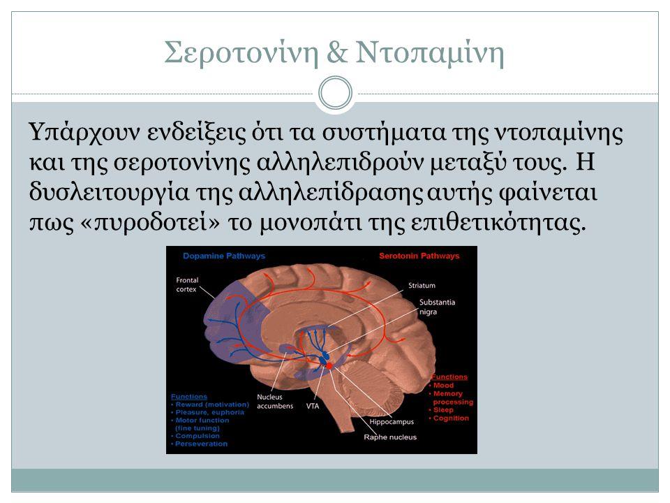 Σεροτονίνη & Ντοπαμίνη Υπάρχουν ενδείξεις ότι τα συστήματα της ντοπαμίνης και της σεροτονίνης αλληλεπιδρούν μεταξύ τους. Η δυσλειτουργία της αλληλεπίδ