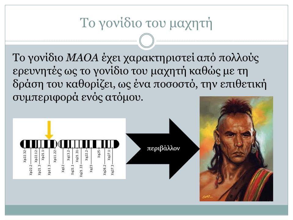 Το γονίδιο του μαχητή Το γονίδιο ΜΑΟΑ έχει χαρακτηριστεί από πολλούς ερευνητές ως το γονίδιο του μαχητή καθώς με τη δράση του καθορίζει, ως ένα ποσοστ