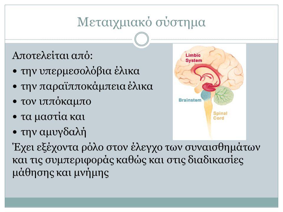 Μεταιχμιακό σύστημα Αποτελείται από: την υπερμεσολόβια έλικα την παραϊπποκάμπεια έλικα τον ιππόκαμπο τα μαστία και την αμυγδαλή Έχει εξέχοντα ρόλο στο