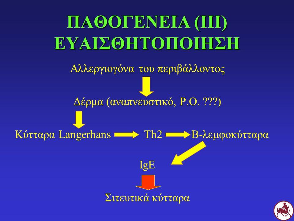 ΠΑΘΟΓΕΝΕΙΑ (ΙΙΙ) ΕΥΑΙΣΘΗΤΟΠΟΙΗΣΗ Αλλεργιογόνα του περιβάλλοντος Δέρμα (αναπνευστικό, P.O. ???) Κύτταρα Langerhans Τh2Β-λεμφοκύτταρα IgE Σιτευτικά κύττ