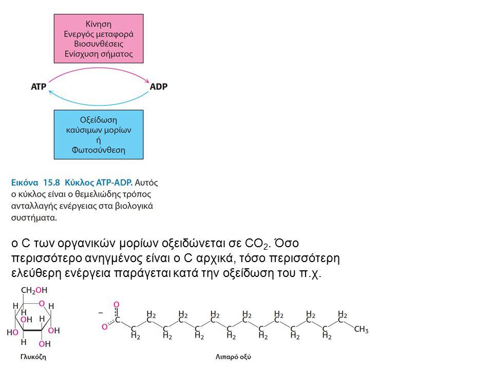 o C των οργανικών μορίων οξειδώνεται σε CO 2. Όσο περισσότερο ανηγμένος είναι ο C αρχικά, τόσο περισσότερη ελεύθερη ενέργεια παράγεται κατά την οξείδω