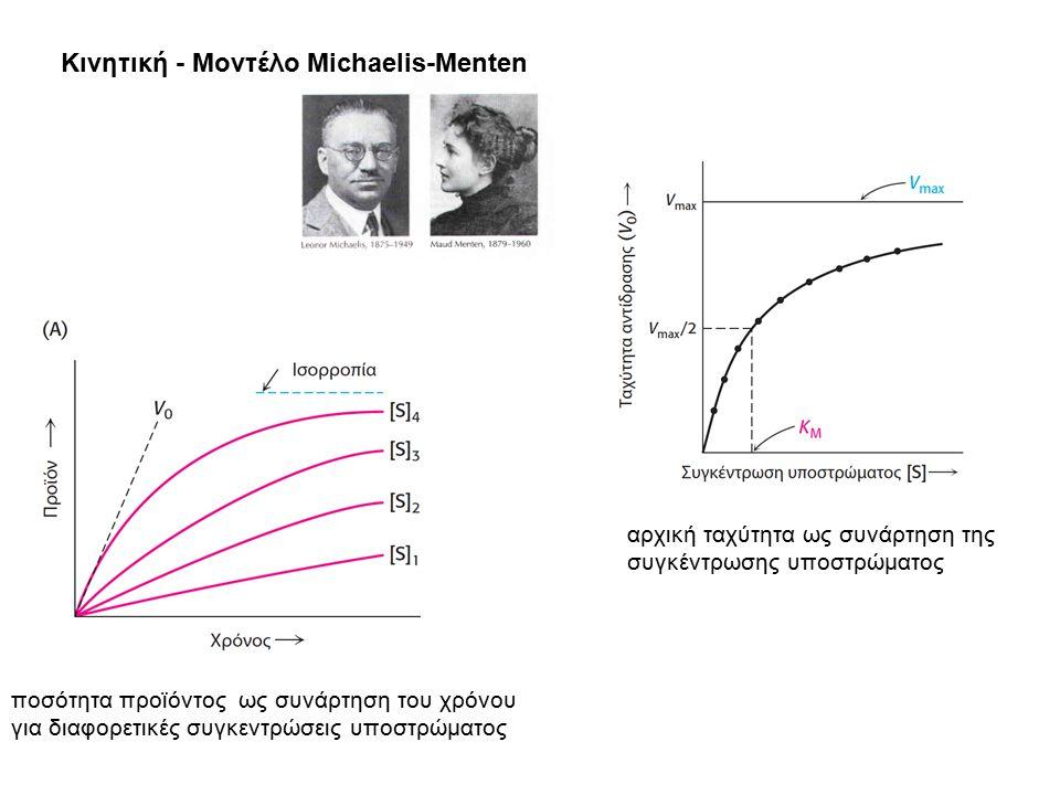 Κινητική - Μοντέλο Michaelis-Menten ποσότητα προϊόντος ως συνάρτηση του χρόνου για διαφορετικές συγκεντρώσεις υποστρώματος αρχική ταχύτητα ως συνάρτησ