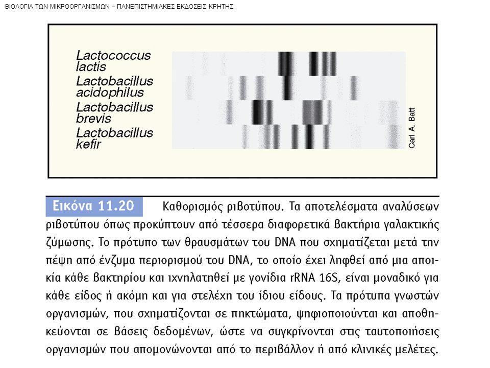 BIOΛOΓIA TΩN MIKPOOPΓANIΣMΩN – ΠANEΠIΣTHMIAKEΣ EKΔOΣEIΣ KPHTHΣ