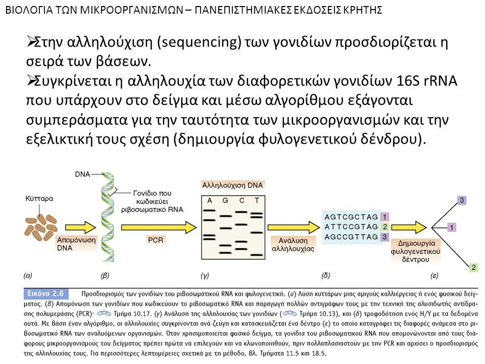 BIOΛOΓIA TΩN MIKPOOPΓANIΣMΩN – ΠANEΠIΣTHMIAKEΣ EKΔOΣEIΣ KPHTHΣ  Στην αλληλούχιση (sequencing) των γονιδίων προσδιορίζεται η σειρά των βάσεων.