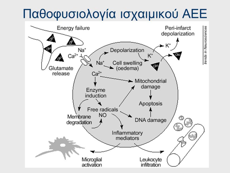 Ταξινόμηση Αγγειακών Εγκεφαλικών Επεισοδίων Εγκεφαλική Αιμορραγία Υπαραχνοειδής αιμορραγία Ενδοκοιλιακή Αιμορραγία Ρήξη ανευρύσματος / αρτηριοφλεβώδου