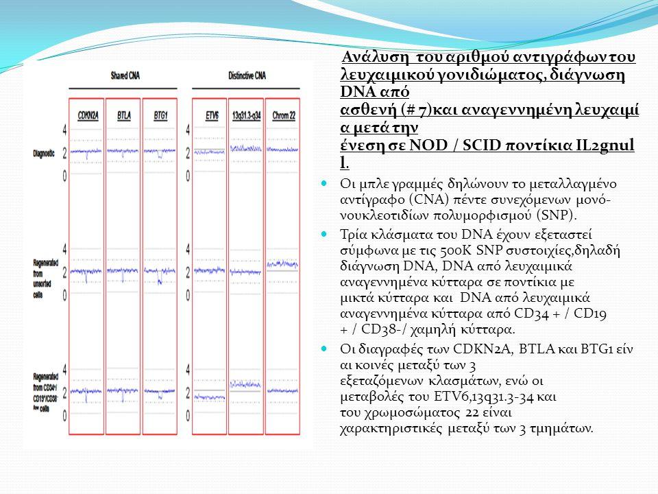 Ανάλυση του αριθμού αντιγράφων του λευχαιμικού γονιδιώματος, διάγνωση DNA από ασθενή (# 7)και αναγεννημένη λευχαιμί α μετά την ένεση σε NOD / SCID ποντίκια IL2gnul l.