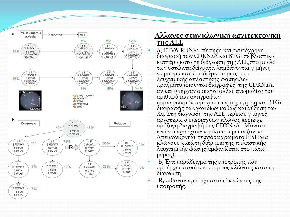 Αλλαγες στην κλωνική αρχιτεκτονική της ALL Α, ETV6-RUNX1 σύντηξη και ταυτόχρονη διαγραφή των CDKN2A και BTG1 σε βλαστικά κυττάρά κατά τη διάγνωση της ALL,στο μυελό των οστών,τα δείγματα λαμβάνονται 7 μήνες νωρίτερα κατά τη διάρκεια μιας προ- λευχαιμικής απλαστικής φάσης.Δεν πραγματοποιούνται διαγραφές της CDKN2A, αν και υπήρχαν αρκετές άλλες ανωμαλίες του αριθμού των αντιγράφων, συμπεριλαμβανομένων των 11q, 15q, 5q και BTG1 διαγραφής των γονιδίων καθώς και αύξηση των Xq.