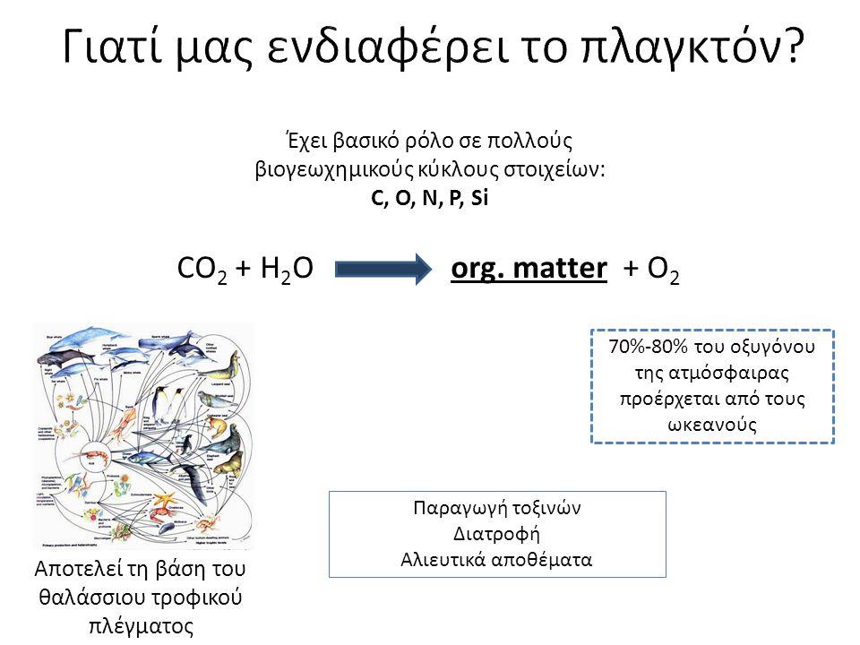 Βιομηχανία Πετρέλαιο (Botryococcus) Επεξεργασία αποβλήτων, βαρέων μετάλλων Βιοαπορρύπανση Διατροφή