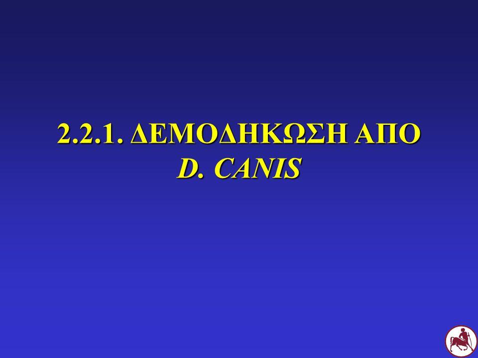 2.2.1. ΔΕΜΟΔΗΚΩΣΗ ΑΠΟ D. CANIS