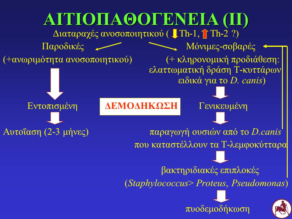 ΑΙΤΙΟΠΑΘΟΓΕΝΕΙΑ (ΙΙ) Διαταραχές ανοσοποιητικού ( Th-1, Th-2 ?) Παροδικές Μόνιμες-σοβαρές (+ανωριμότητα ανοσοποιητικού) (+ κληρονομική προδιάθεση: ελαττωματική δράση Τ-κυττάρων ειδικά για το D.