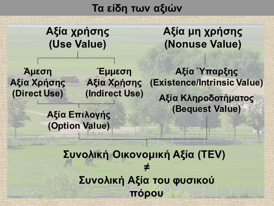 Αξία χρήσης (Use Value) Αξία μη χρήσης (Nonuse Value) Άμεση Αξία Χρήσης (Direct Use) Έμμεση Αξία Χρήσης (Indirect Use) Αξία Επιλογής (Option Value) Συνολική Οικονομική Αξία (TEV) ≠ Συνολική Αξία του φυσικού πόρου Αξία Ύπαρξης (Existence/Intrinsic Value) Αξία Κληροδοτήματος (Bequest Value) Τα είδη των αξιών